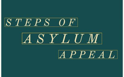 How Many Times You Can Appeal an Asylum Denial